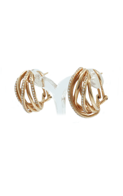 Lin's Jewelry Earrings 215-00628 product image